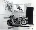 "Banner: 43' x 46"" 750SS Ricky Racer Cloth Tapestry"